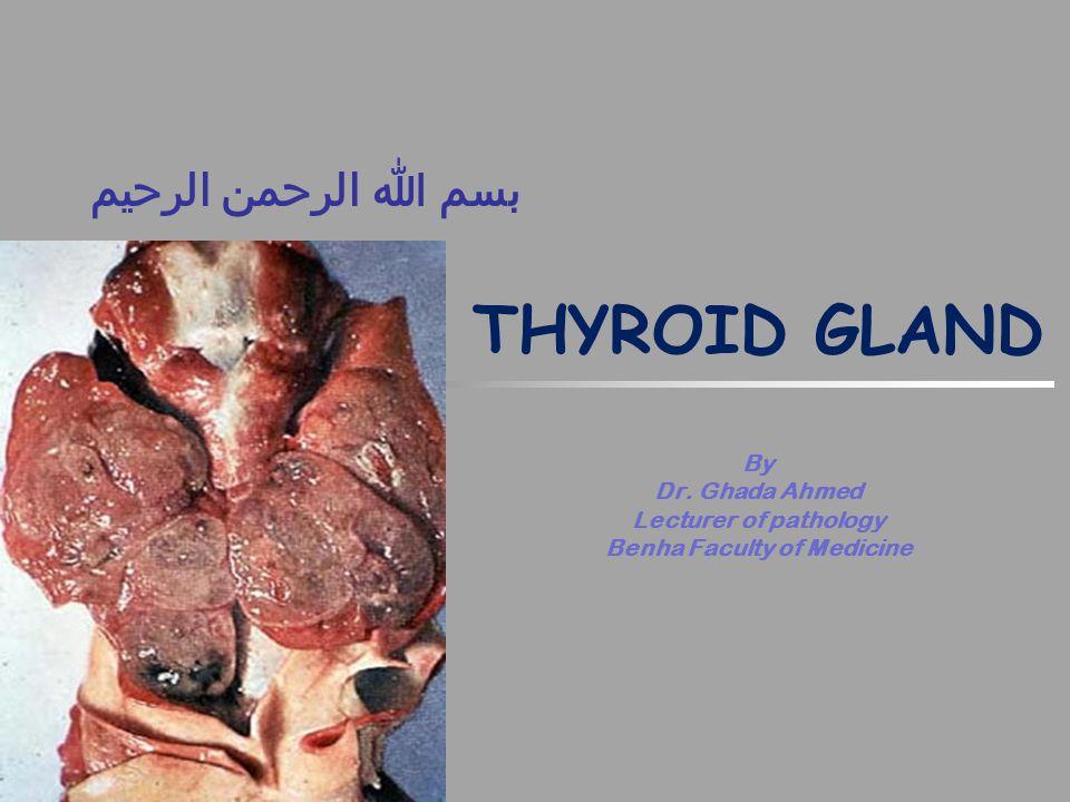 بسم الله الرحمن الرحيم THYROID GLAND By Dr.