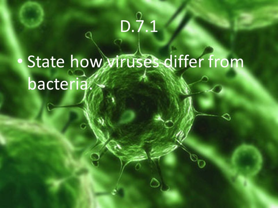 D.7.1 State how viruses differ from bacteria.