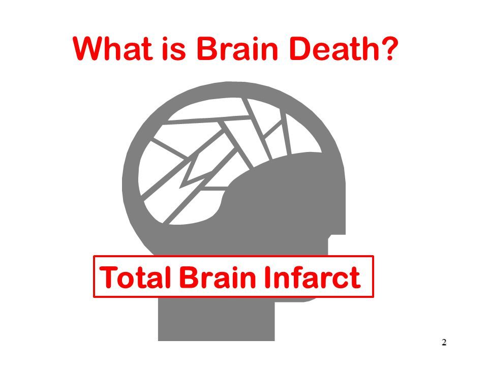 Total Brain Infarct 2 What is Brain Death