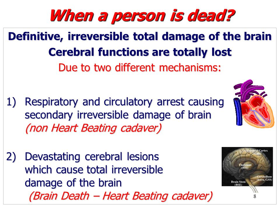 49 Brain Death Declaration Certain diagnosis plus Legal procedures