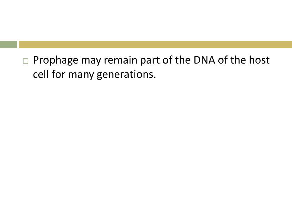 Prophage may remain part of the DNA of the host cell for many generations.