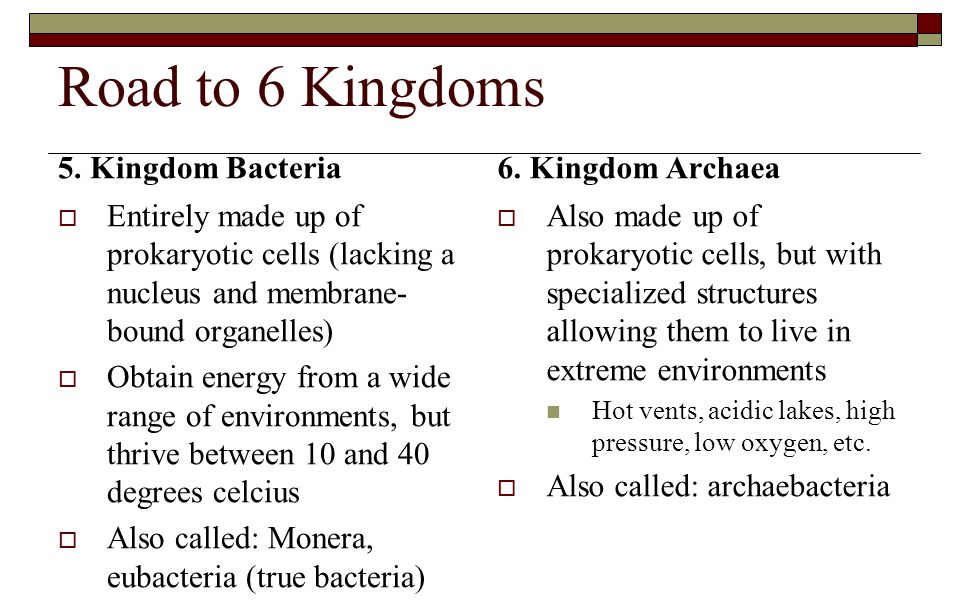Road to 6 Kingdoms 5. Kingdom Bacteria  Entirely made up of prokaryotic cells (lacking a nucleus and membrane- bound organelles)  Obtain energy from