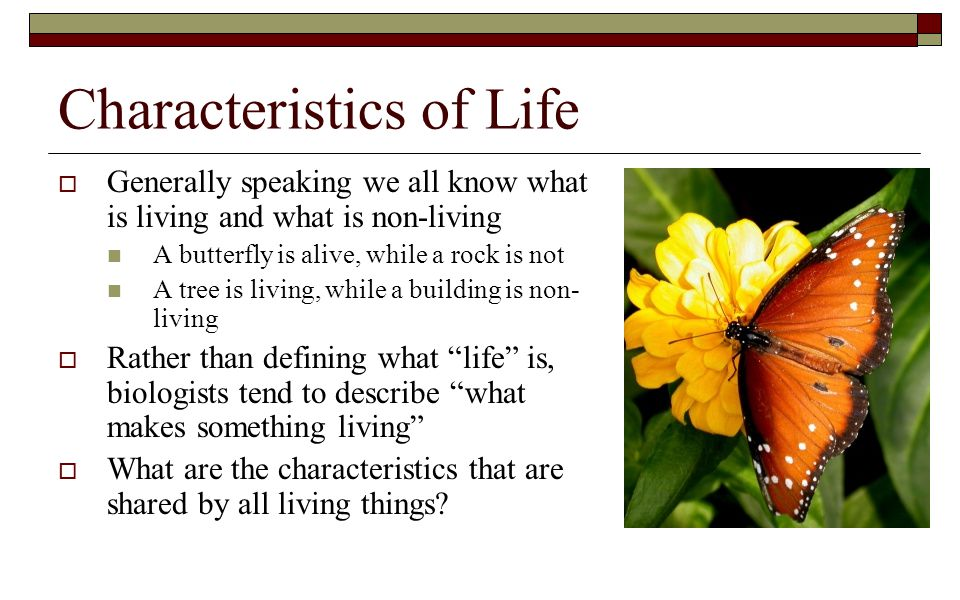 Characteristics of Life  Generally speaking we all know what is living and what is non-living A butterfly is alive, while a rock is not A tree is liv