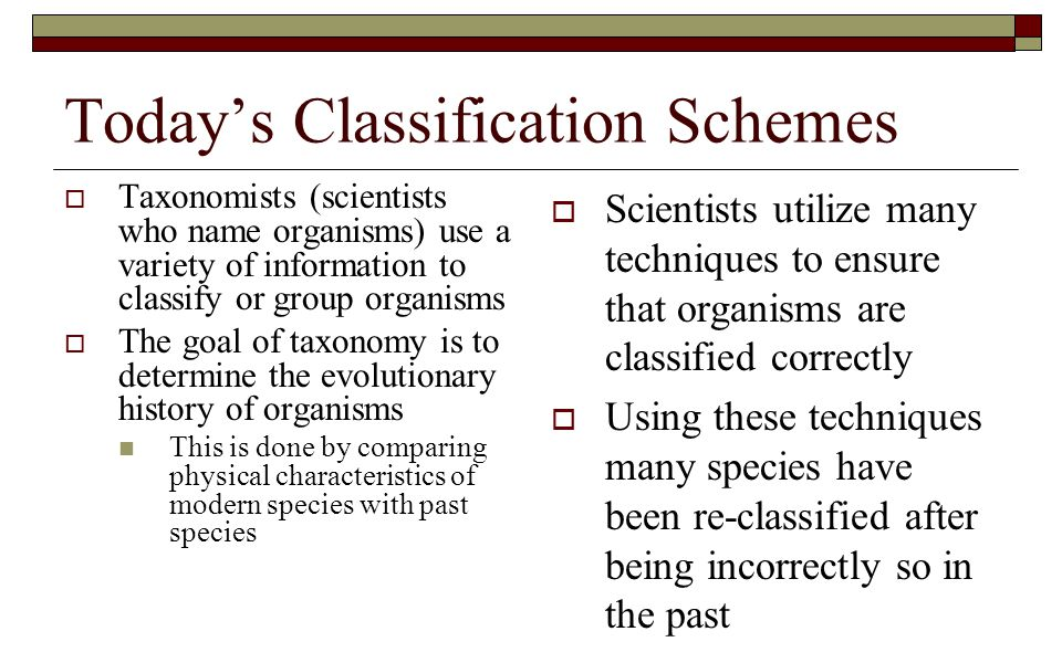 Today's Classification Schemes  Taxonomists (scientists who name organisms) use a variety of information to classify or group organisms  The goal of