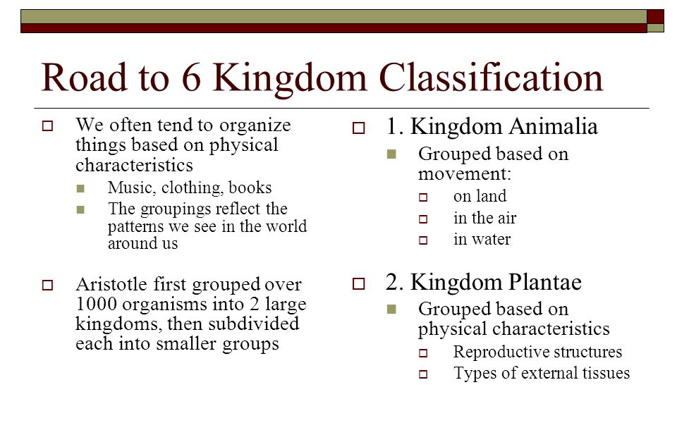 Road to 6 Kingdom Classification  We often tend to organize things based on physical characteristics Music, clothing, books The groupings reflect the