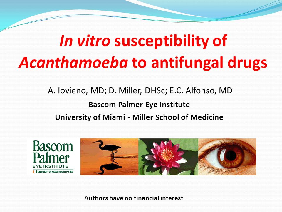 In vitro susceptibility of Acanthamoeba to antifungal drugs Bascom Palmer Eye Institute University of Miami - Miller School of Medicine A.