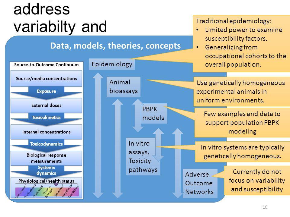 Assay limitations to address variabilty and susceptibility 10 Data, models, theories, concepts Epidemiology Animal bioassays PBPK models In vitro assays, Toxicity pathways Adverse Outcome Networks In vitro systems are typically genetically homogeneous.