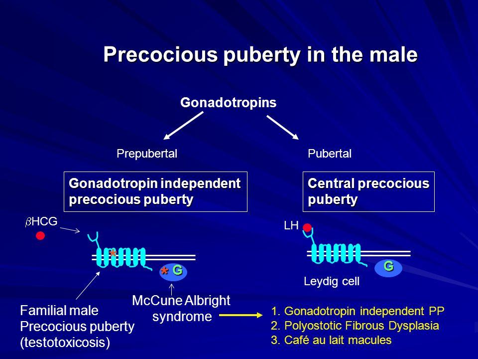 Precocious puberty in the male Gonadotropins Prepubertal Pubertal Gonadotropin independentCentral precocious precocious pubertypuberty  HCG LH* McCun
