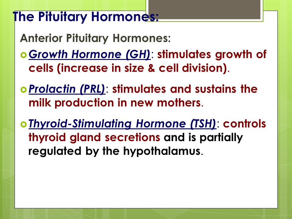 The Pituitary Hormones: Anterior Pituitary Hormones:  Growth Hormone (GH) : stimulates growth of cells (increase in size & cell division).
