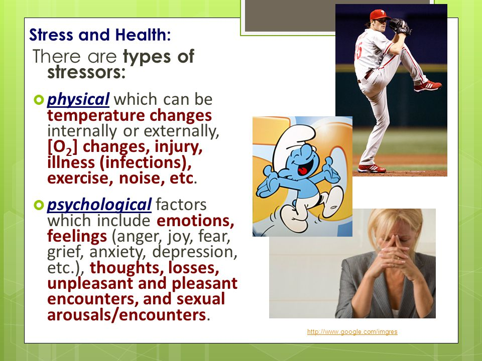 Stress and Health: There are types of stressors:  physical which can be temperature changes internally or externally, [O 2 ] changes, injury, illness (infections), exercise, noise, etc.