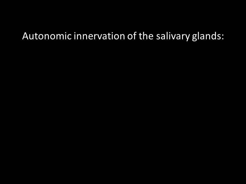 Autonomic innervation of the salivary glands: