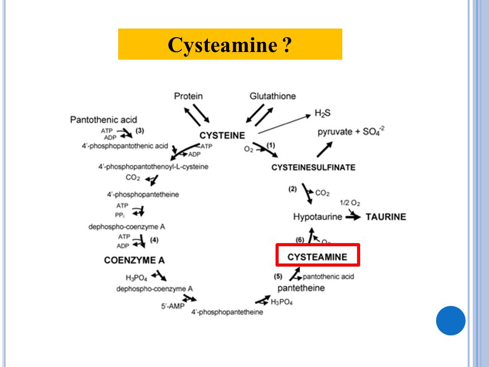 Cysteamine ?