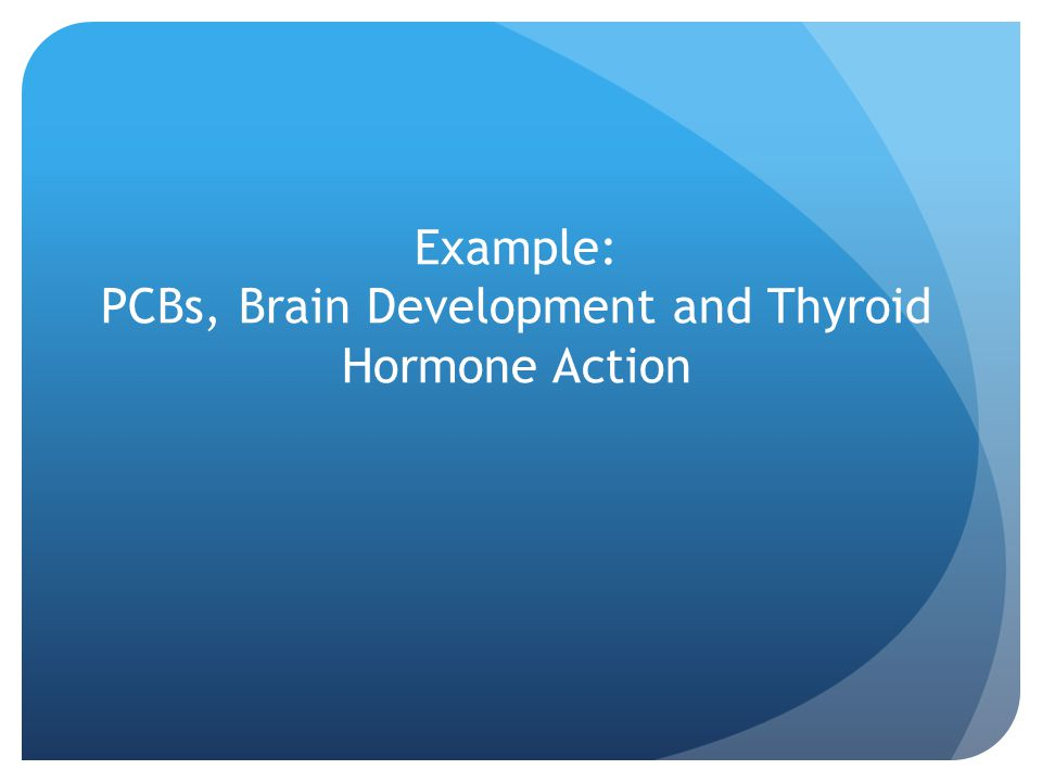 Example: PCBs, Brain Development and Thyroid Hormone Action