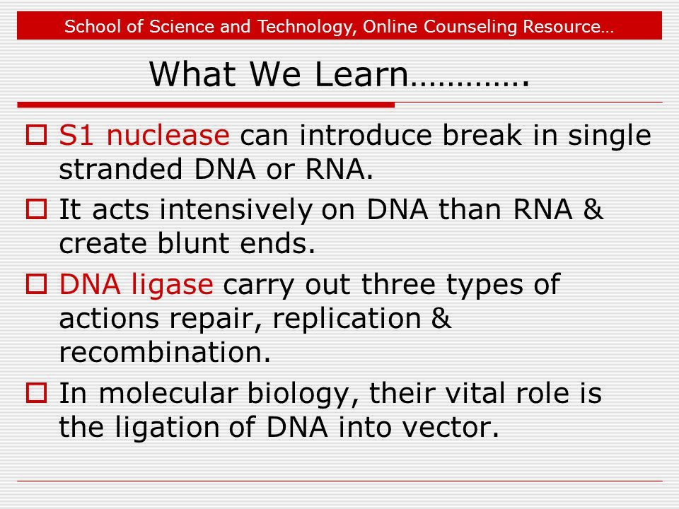 School of Science and Technology, Online Counseling Resource… What We Learn………….  S1 nuclease can introduce break in single stranded DNA or RNA.  It