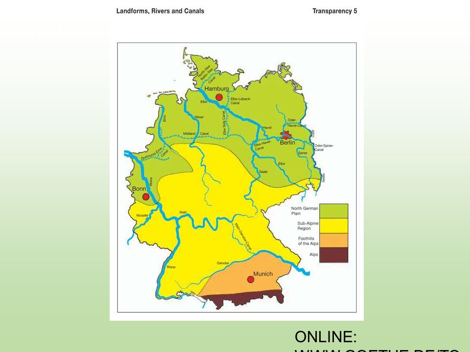 ONLINE: WWW.GOETHE.DE/TO P T13.2: What Does the Euro Look Like?