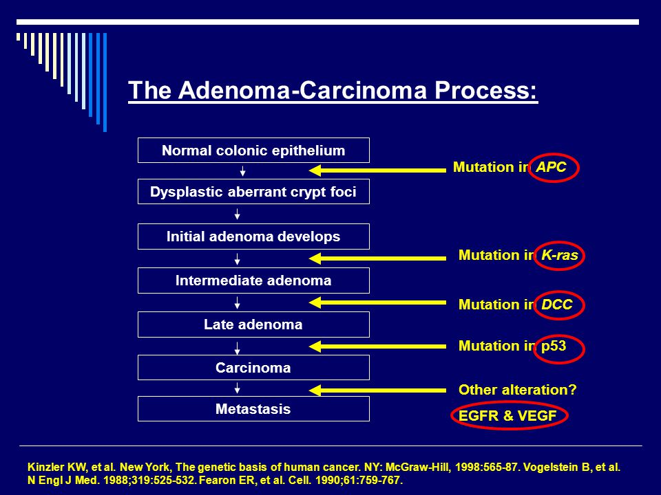The Adenoma-Carcinoma Process: Kinzler KW, et al. New York, The genetic basis of human cancer. NY: McGraw-Hill, 1998:565-87. Vogelstein B, et al. N En
