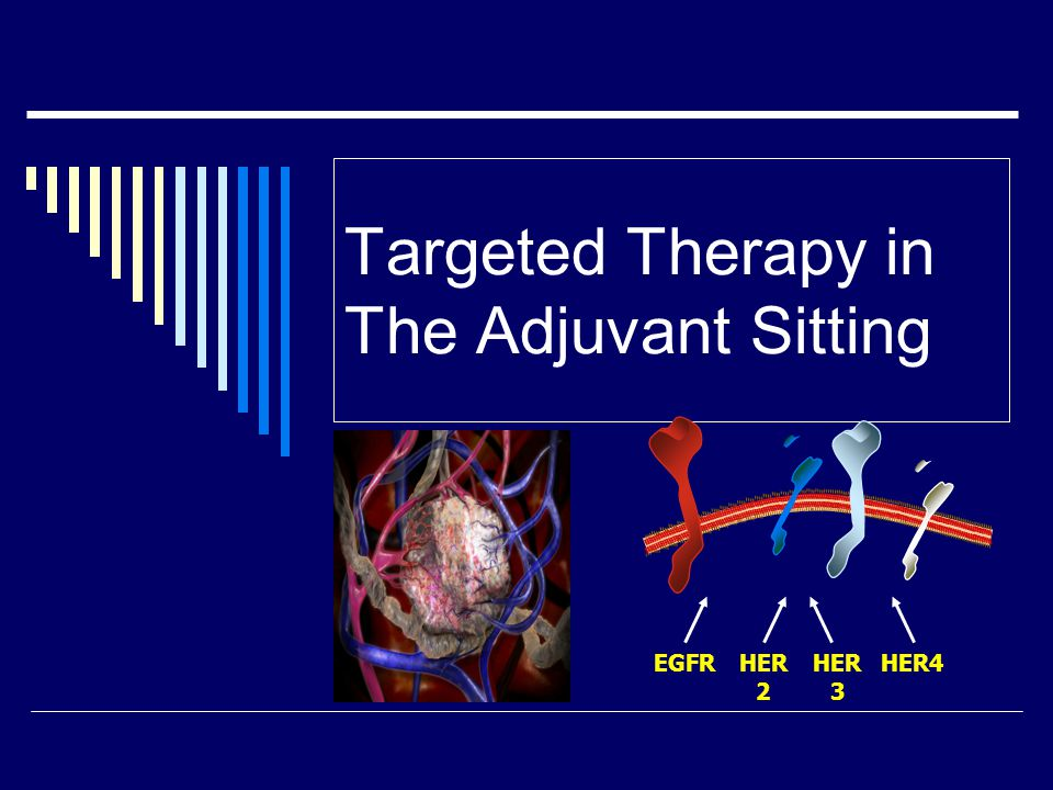 Targeted Therapy in The Adjuvant Sitting EGFRHER 2 HER 3 HER4