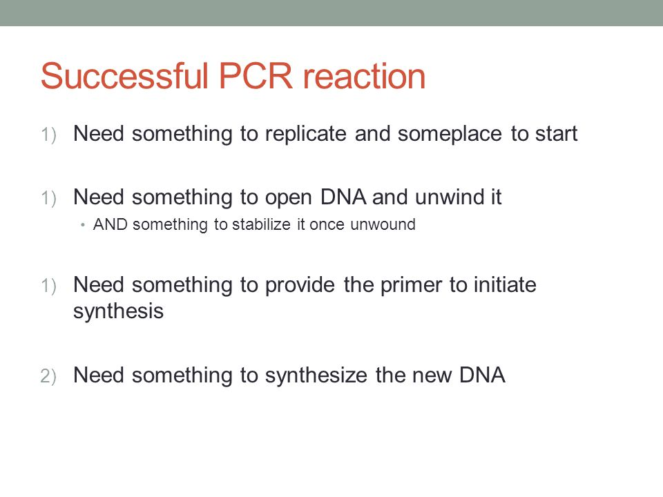 Successful PCR reaction 1) Need something to replicate and someplace to start 1) Need something to open DNA and unwind it AND something to stabilize it once unwound 1) Need something to provide the primer to initiate synthesis 2) Need something to synthesize the new DNA
