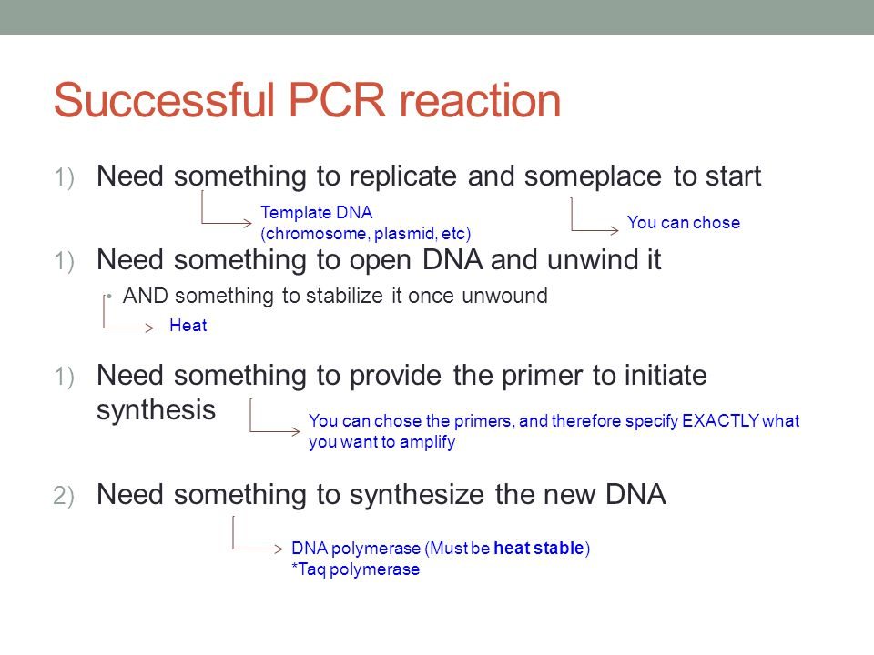Successful PCR reaction 1) Need something to replicate and someplace to start 1) Need something to open DNA and unwind it AND something to stabilize it once unwound 1) Need something to provide the primer to initiate synthesis 2) Need something to synthesize the new DNA Template DNA (chromosome, plasmid, etc) You can chose Heat You can chose the primers, and therefore specify EXACTLY what you want to amplify DNA polymerase (Must be heat stable) *Taq polymerase