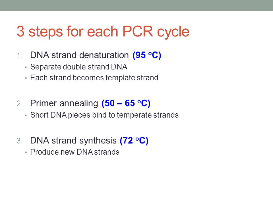 3 steps for each PCR cycle 1.