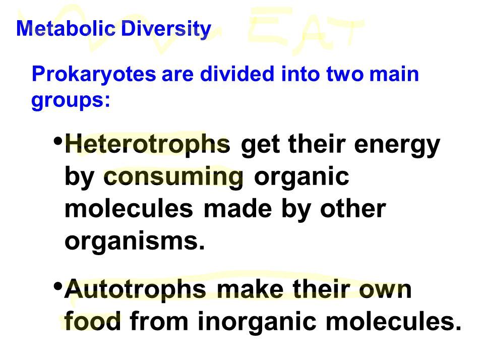 Metabolic Diversity Prokaryotes are divided into two main groups: Heterotrophs get their energy by consuming organic molecules made by other organisms