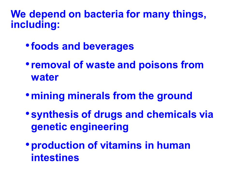 We depend on bacteria for many things, including: foods and beverages removal of waste and poisons from water mining minerals from the ground synthesi