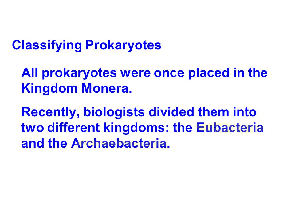 Classifying Prokaryotes All prokaryotes were once placed in the Kingdom Monera. Recently, biologists divided them into two different kingdoms: the Eub