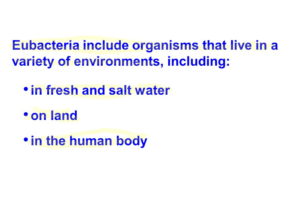 Eubacteria include organisms that live in a variety of environments, including: in fresh and salt water on land in the human body