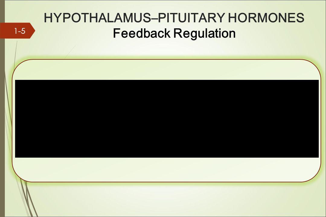 HYPOTHALAMUS–PITUITARY HORMONES Feedback Regulation 1-5