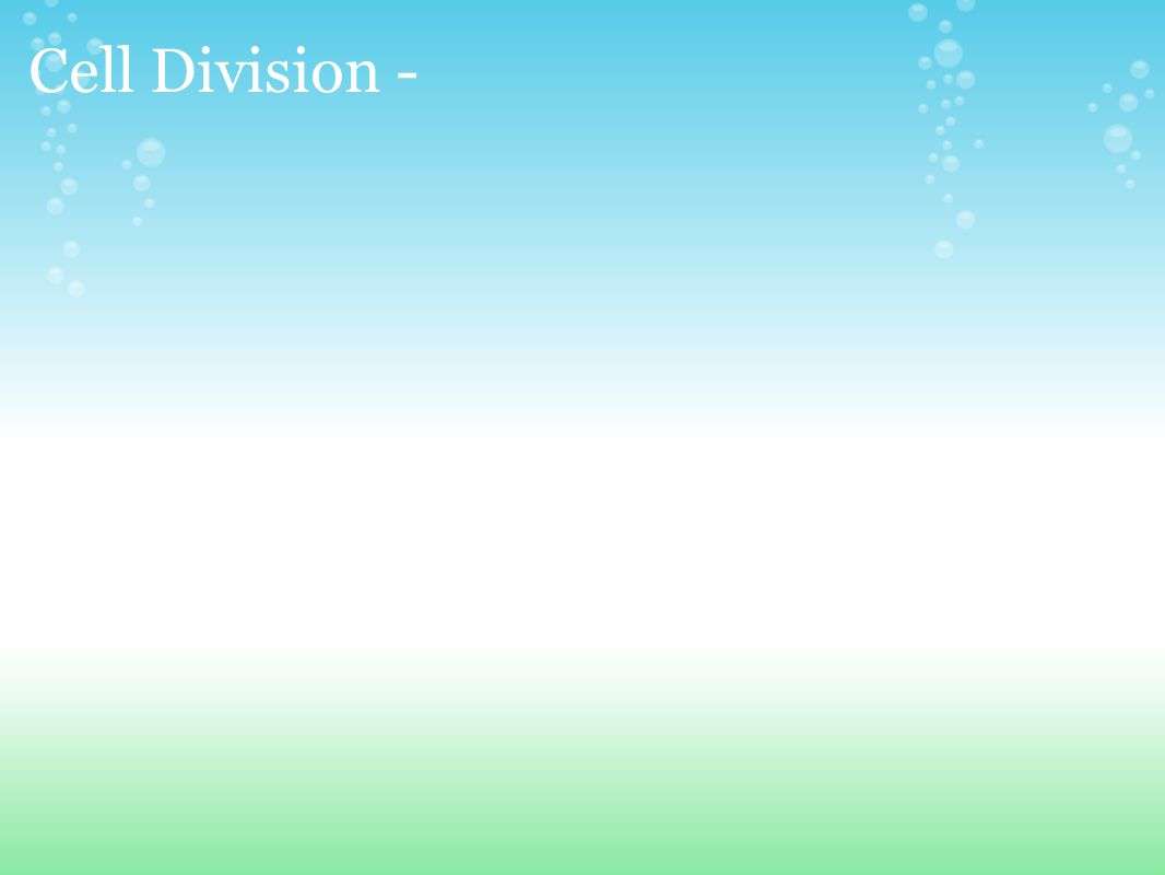 Cell Division -