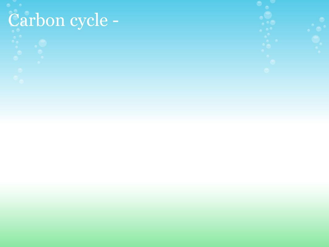 Carbon cycle -