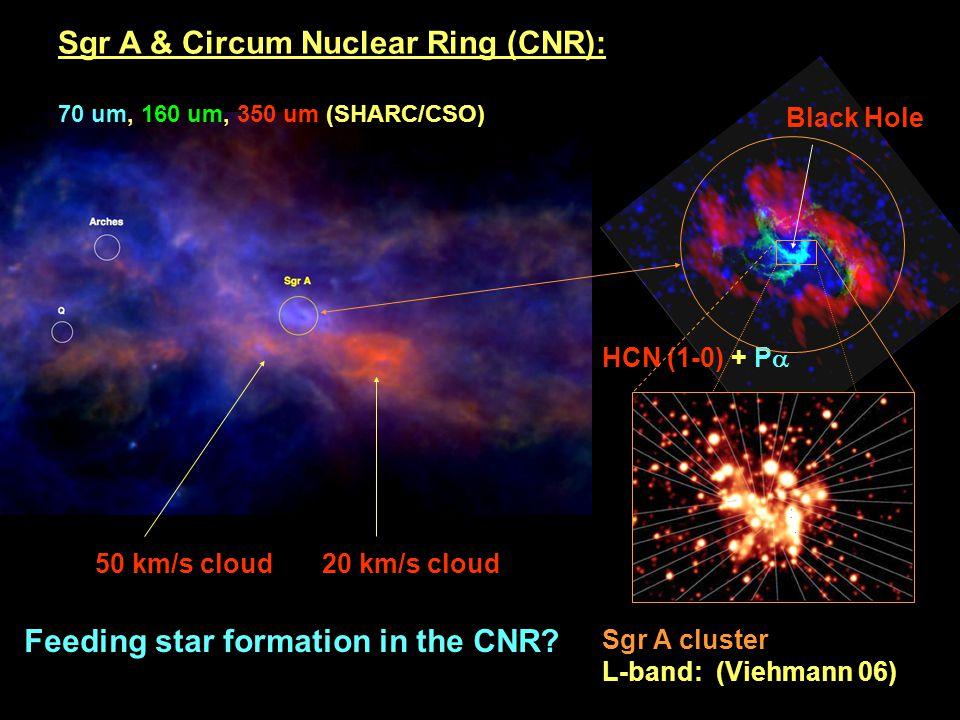 Sgr A cluster L-band: (Viehmann 06) Sgr A & Circum Nuclear Ring (CNR): 70 um, 160 um, 350 um (SHARC/CSO) HCN (1-0) + P  50 km/s cloud 20 km/s cloud Black Hole Feeding star formation in the CNR?