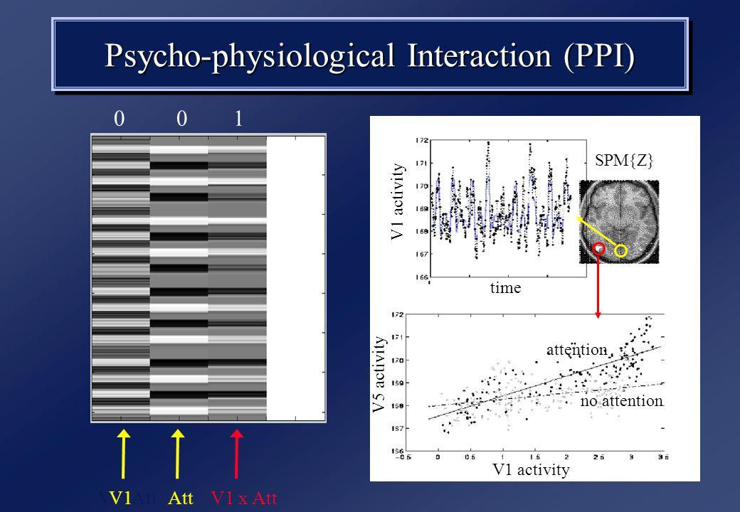SPM{Z} attention no attention V1 activity V5 activity time V1 activity Psycho-physiological Interaction (PPI) V1xAtt V1AttV1 x Att 0 0 1