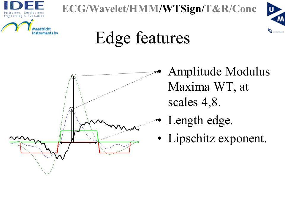 Edge features Amplitude Modulus Maxima WT, at scales 4,8.