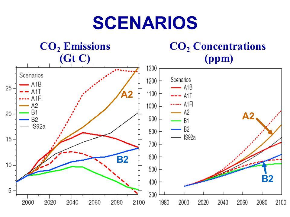 SCENARIOS CO 2 Emissions (Gt C) CO 2 Concentrations (ppm) A2 B2