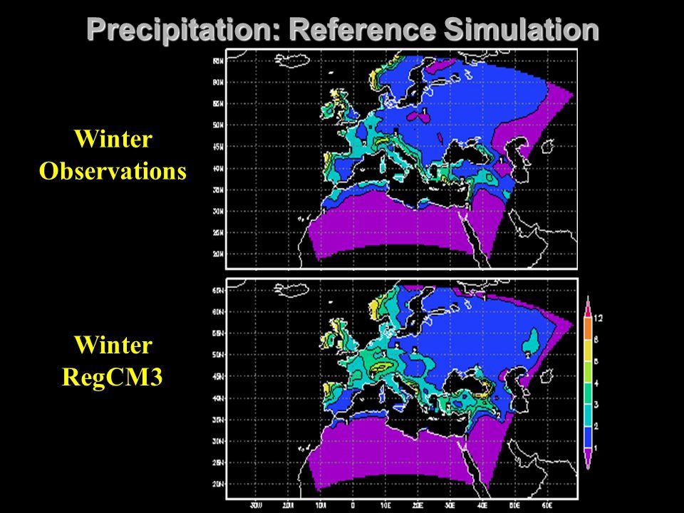 Precipitation: Reference Simulation Winter RegCM3 Winter Observations