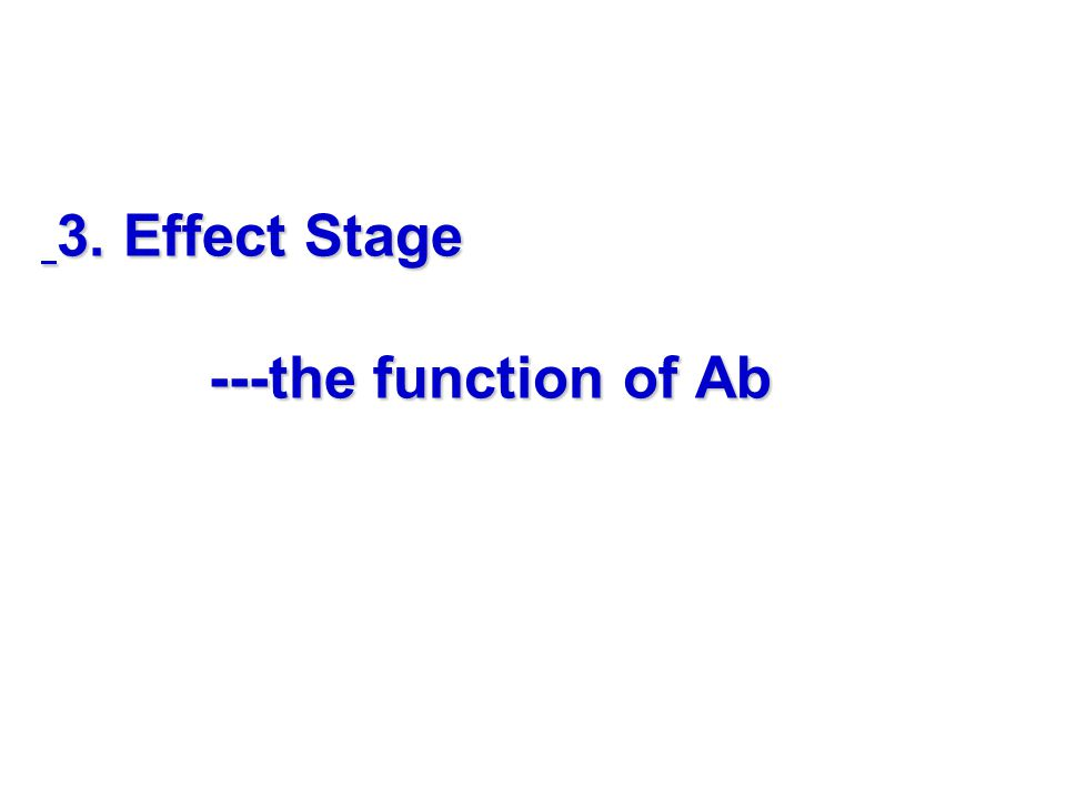 3. Effect Stage ---the function of Ab 3. Effect Stage ---the function of Ab