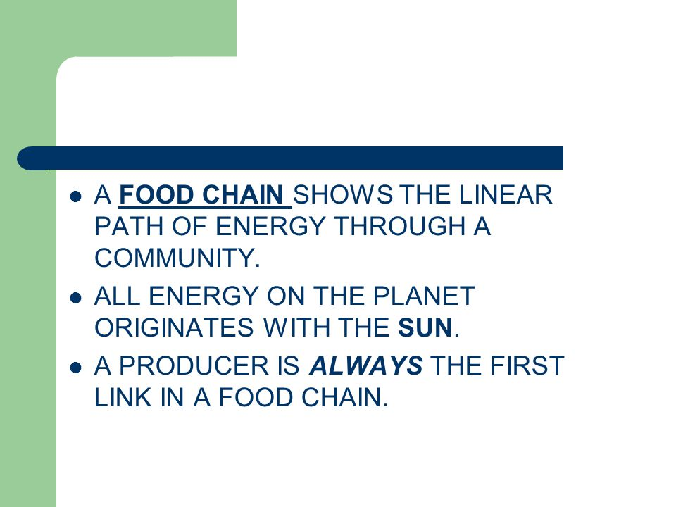 A FOOD CHAIN SHOWS THE LINEAR PATH OF ENERGY THROUGH A COMMUNITY. ALL ENERGY ON THE PLANET ORIGINATES WITH THE SUN. A PRODUCER IS ALWAYS THE FIRST LIN