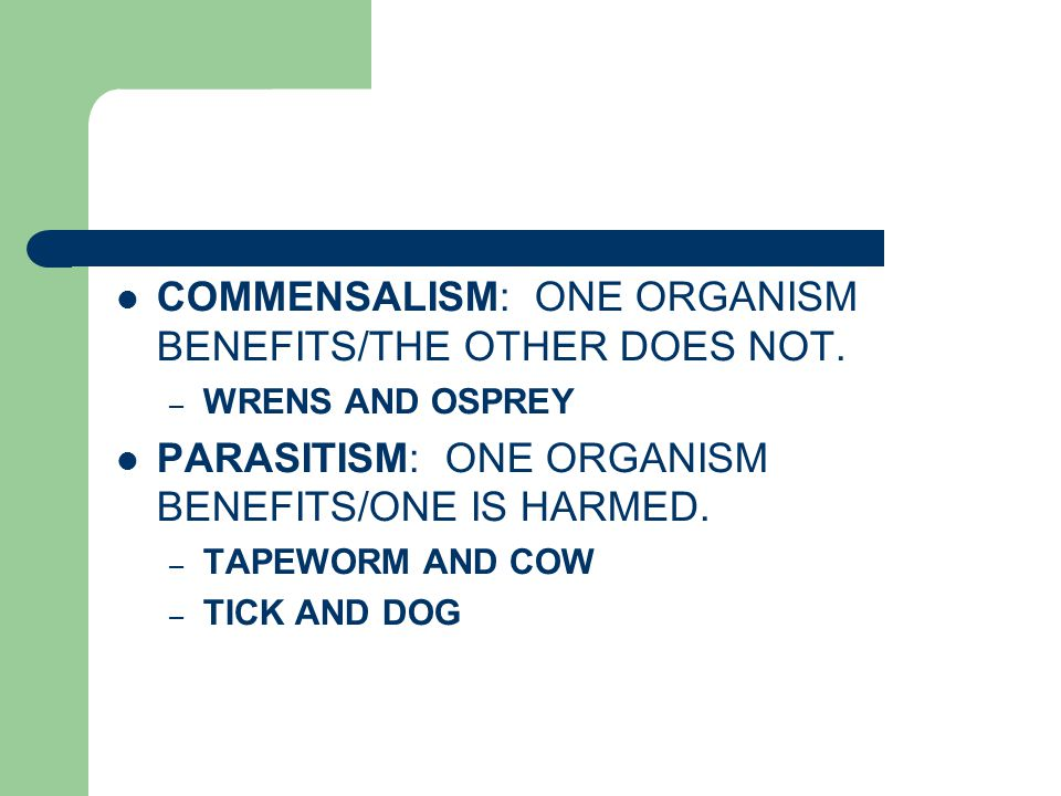 COMMENSALISM: ONE ORGANISM BENEFITS/THE OTHER DOES NOT. – WRENS AND OSPREY PARASITISM: ONE ORGANISM BENEFITS/ONE IS HARMED. – TAPEWORM AND COW – TICK