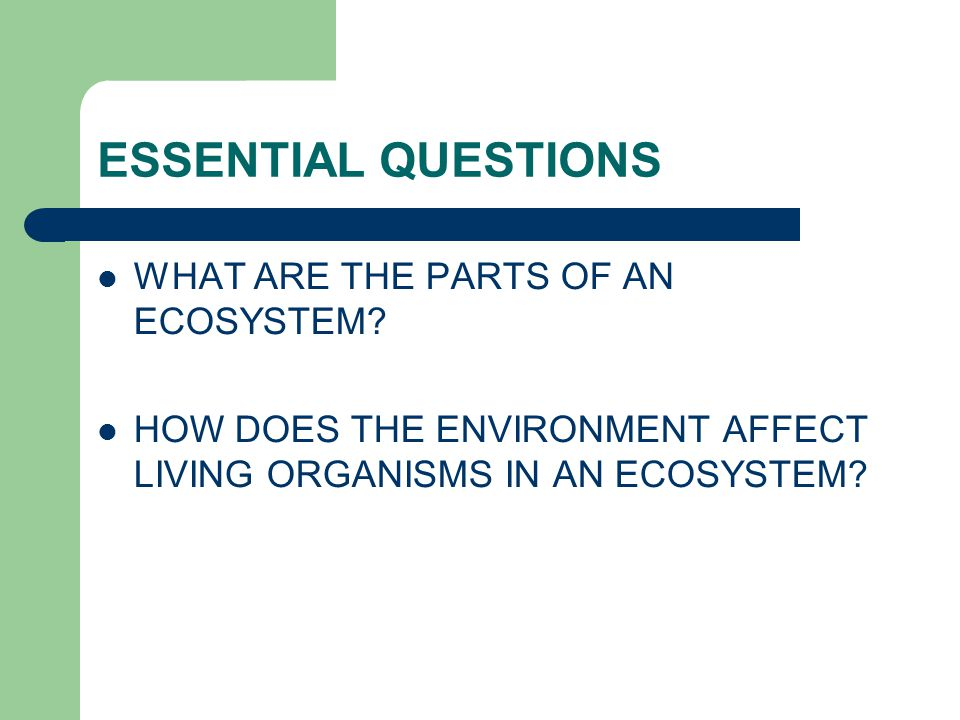 ESSENTIAL QUESTIONS WHAT ARE THE PARTS OF AN ECOSYSTEM? HOW DOES THE ENVIRONMENT AFFECT LIVING ORGANISMS IN AN ECOSYSTEM?