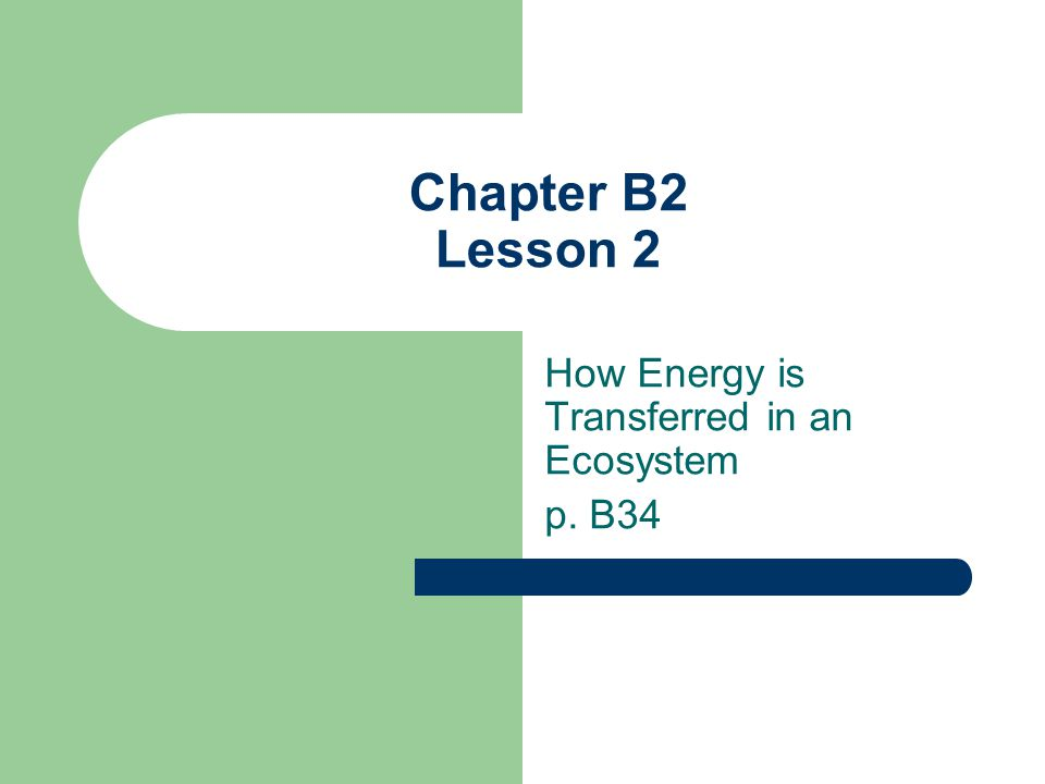 Chapter B2 Lesson 2 How Energy is Transferred in an Ecosystem p. B34