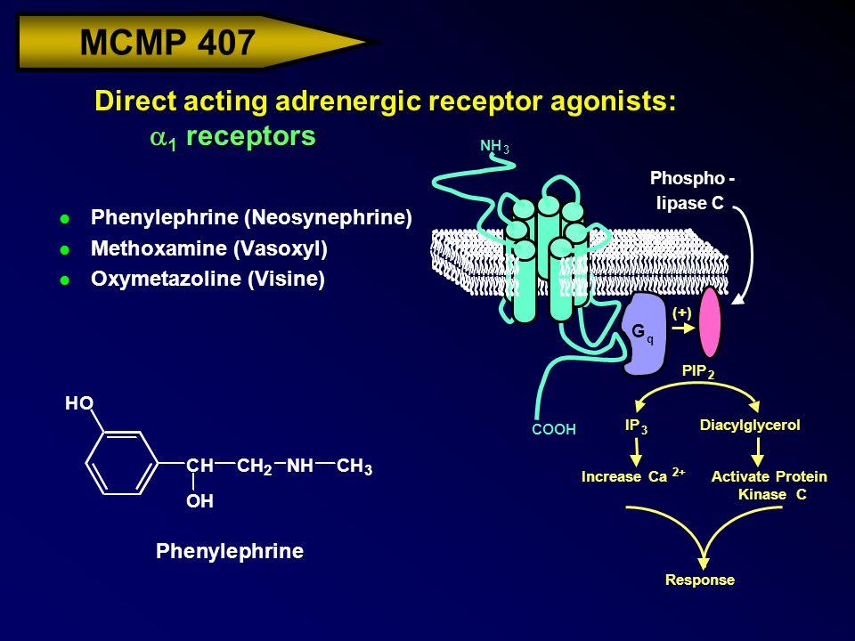 MCMP 407 Direct acting adrenergic receptor agonists:  1 receptors l Phenylephrine (Neosynephrine) l Methoxamine (Vasoxyl) l Oxymetazoline (Visine) Ph