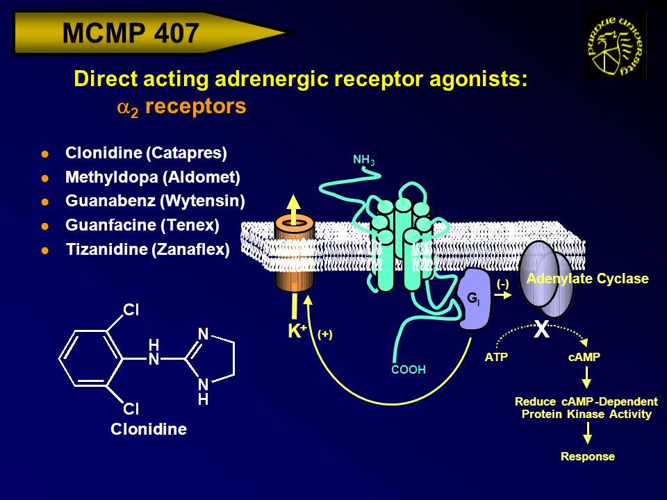 MCMP 407 Direct acting adrenergic receptor agonists:  2 receptors l Clonidine (Catapres) l Methyldopa (Aldomet) l Guanabenz (Wytensin) l Guanfacine (