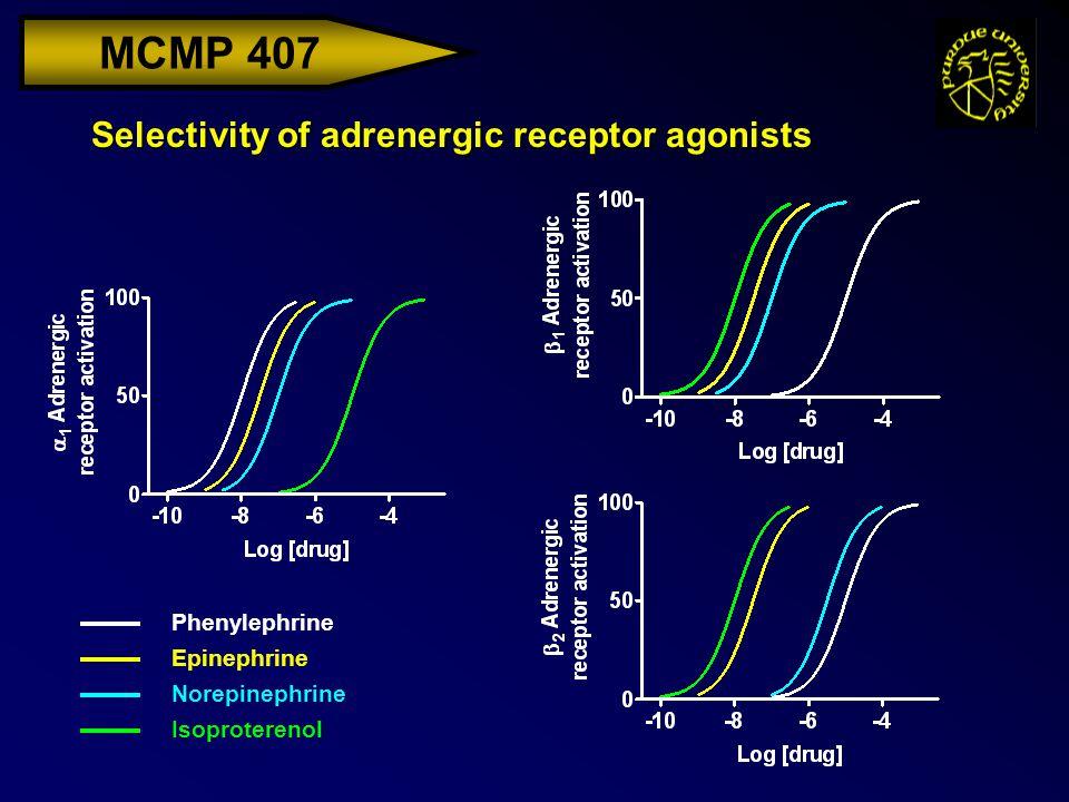 MCMP 407 Selectivity of adrenergic receptor agonists Phenylephrine Epinephrine Norepinephrine Isoproterenol