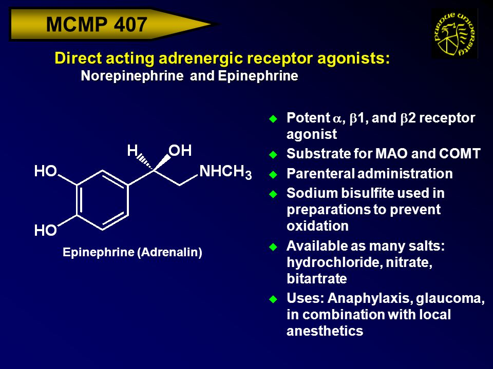MCMP 407 Direct acting adrenergic receptor agonists: Norepinephrine and Epinephrine  Potent ,  1, and  2 receptor agonist u Substrate for MAO and