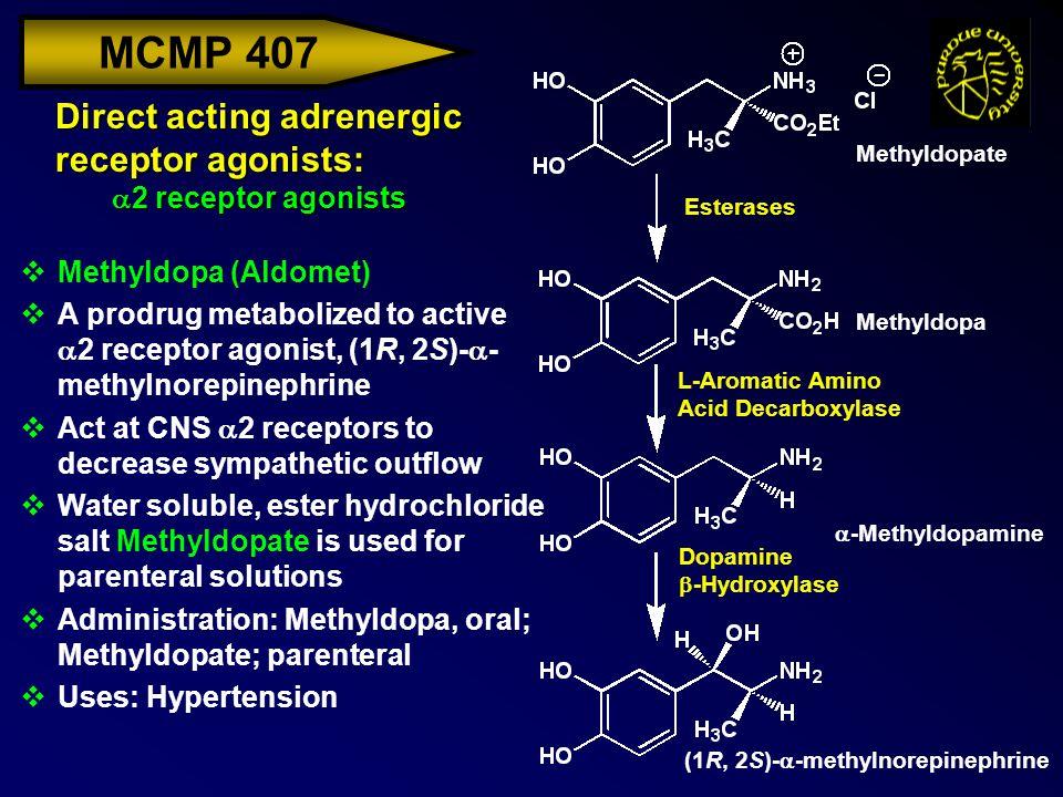 MCMP 407 Direct acting adrenergic receptor agonists:  2 receptor agonists vMethyldopa (Aldomet)  A prodrug metabolized to active  2 receptor agonis