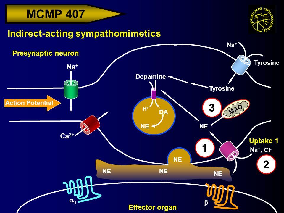 MCMP 407 Action Potential Na + Indirect-acting sympathomimetics Presynaptic neuron H+H+ Effector organ Ca 2+ Na + Tyrosine Dopamine DA NE Uptake 1 Na