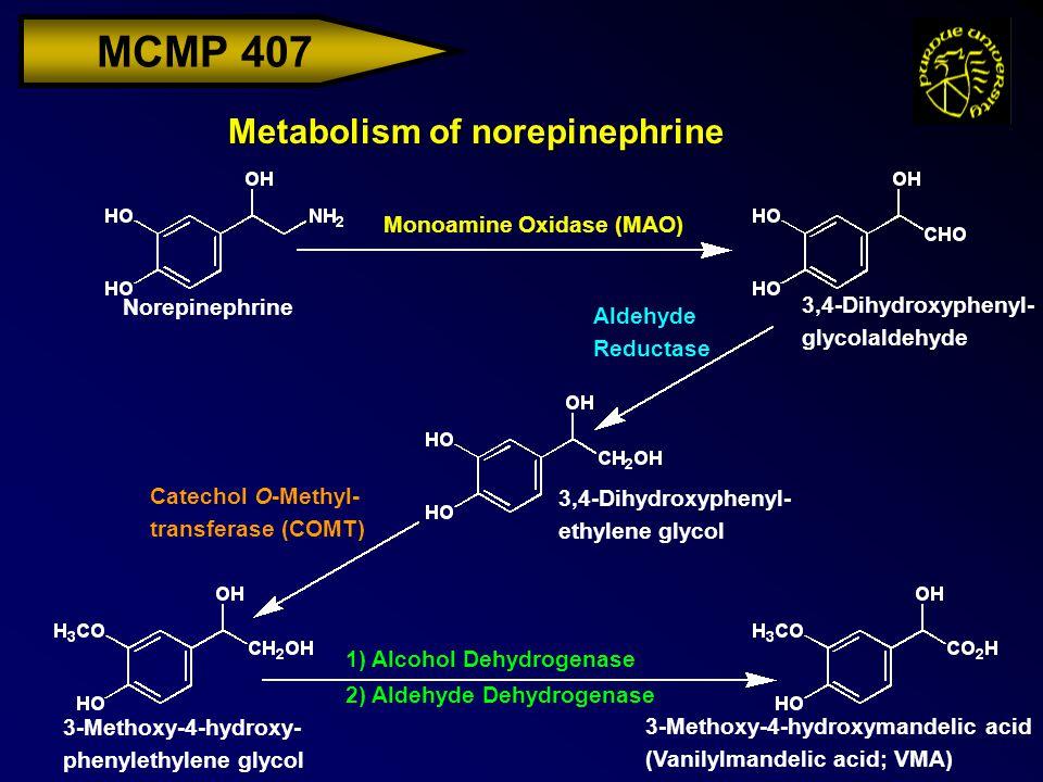 MCMP 407 Metabolism of norepinephrine Norepinephrine 3-Methoxy-4-hydroxymandelic acid (Vanilylmandelic acid; VMA) Monoamine Oxidase (MAO) 3,4-Dihydrox