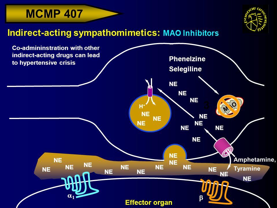 MCMP 407 Indirect-acting sympathomimetics: MAO Inhibitors H+H+ Effector organ NE   MAO 3 Phenelzine Selegiline NE Co-admininstration with other i