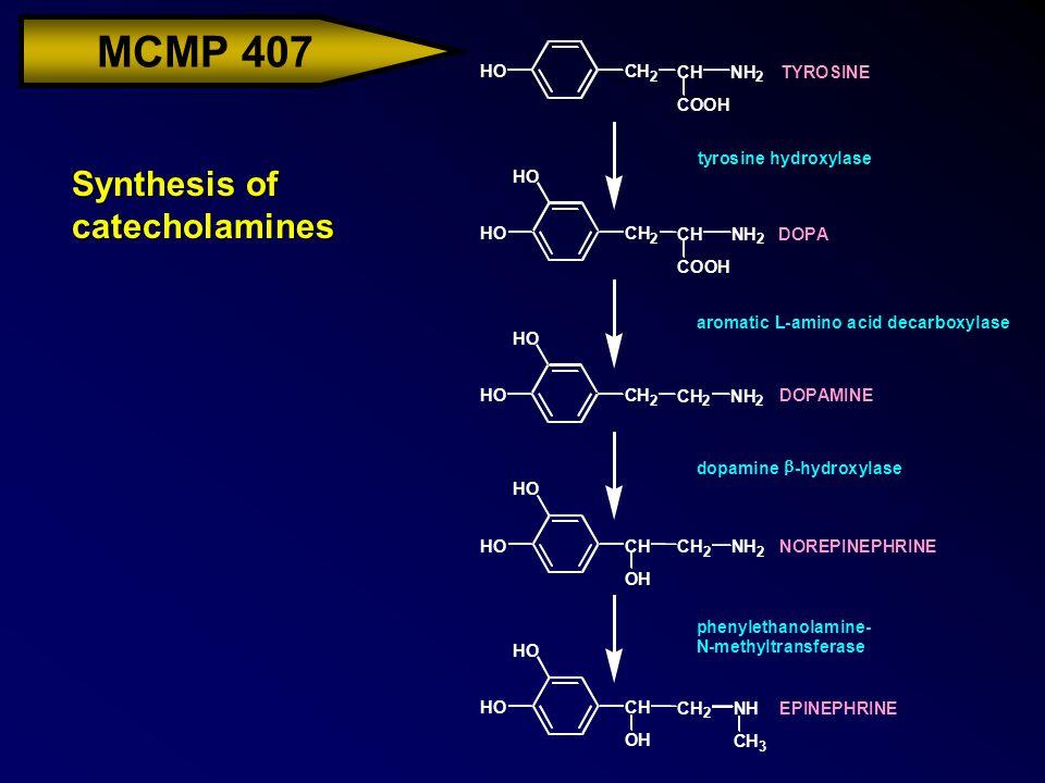 MCMP 407 Synthesis of catecholamines COOH HOCH 2 CHNH 2 COOH HO HO HOCH 2 CH 2 NH 2 TYROSINE DOPA DOPAMINE NOREPINEPHRINE EPINEPHRINE tyrosine hydroxy